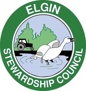 Elgin Stewardship Council